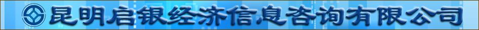 昆明启银经济信息咨询有限公司