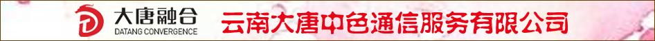 云南大唐中色通信服務有限公司